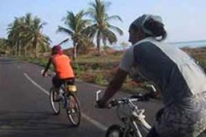 Lombok Biking Trip (5 Hours)
